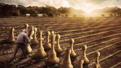 hukum bermain catur